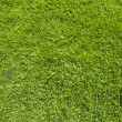 Comment icon on green grass texture and background — Stock Photo #13498265