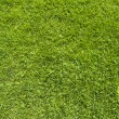 Comment icon on green grass texture and background — Stock Photo #13498272