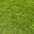 Wireless icon on green grass texture and background — Stock Photo #13607490