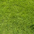 Wireless icon on green grass texture and background — Stock Photo #13607506