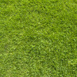 Plus icon on green grass texture and background  — Stock Photo