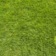 Phone icon on green grass texture and background  — Stock Photo #13650646