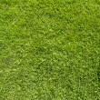 Royalty-Free Stock Photo: Phone icon on green grass texture and background