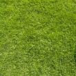 Phone icon on green grass texture and background — Stock Photo #13650695