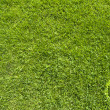 Shutdown icon on green grass texture and background — Stock Photo #13736483