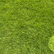 Stock Photo: Pie chart on green grass texture and background