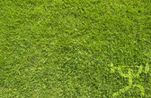 Sport weight on green grass texture and background — Stock Photo