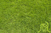 Yeşil çim doku ve arka plan üzerinde güreş spor — Stok fotoğraf