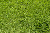 Sport swimming on green grass texture and background — Stock Photo