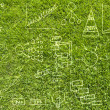 Drawing business plan on green grass texture and  background — Stock Photo
