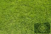 Icono de cámara sobre fondo verde hierba — Foto de Stock
