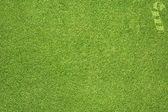 Christmas icon on grass background — Stock Photo