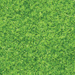 Green grass background — Stockvektor