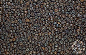 Label on coffee background and textured — Stock Photo