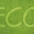 Eco letter on green grass texture and background — Foto de Stock