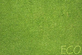 Eco letter on green grass texture and background — Stock Photo
