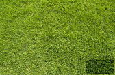 Bag icon on green grass texture and background — Stock Photo