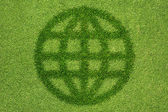 Global icon on green grass texture and background — Stock Photo