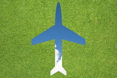 Plane icon with grass and sky — Stock Photo
