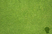 Idea icon on green grass texture and background — Stock Photo