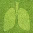 Stock Photo: Lung icon on green grass texture and background