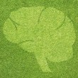 Brain icon on green grass texture and background — Stock Photo
