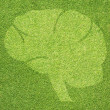 Brain icon on green grass texture and background — Stock Photo #27034103