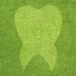 Tooth icon on green grass texture and background — Stock Photo