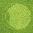 Eye icon on green grass texture and background — Stock Photo