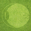 Eye icon on green grass texture and background — Stock Photo #27035901