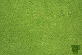 Leaf icon on green grass texture and background — Stock Photo