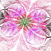 Colorful fractal flower on white background, digital art — Stock Photo