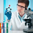 Working at the laboratory — Stock Photo