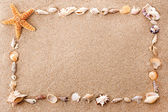 Frame of seashells — Stock Photo