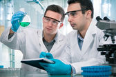 Scientists working in a research laboratory — Stockfoto