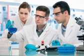 Scientists experimentation in research laboratory — Stock Photo
