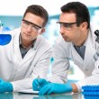 Royalty-Free Stock Photo: Scientists  working in a research laboratory
