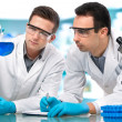 Scientists working in a research laboratory — Stock Photo #19089429