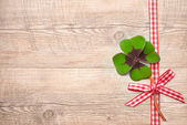 Four leaf clover over wooden background — Stock Photo