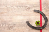 Horseshoes with clover — Stock Photo
