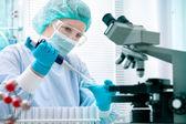 Naukowiec pracujący w laboratorium — Zdjęcie stockowe