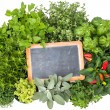 Fresh kitchen herbs — Stock Photo