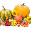 pumpkins — Stock Photo #33699021