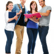 Stock Photo: Group of the college students