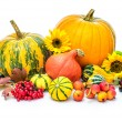 pumpkins — Stock Photo #34984323