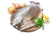 Rainbow trout — Stock Photo