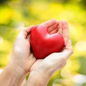 Rött hjärta i mänskliga händer — Stockfoto