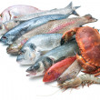 Stock Photo: Seafood isolated on white background