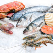 Stock Photo: Seafood on ice