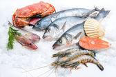 Seafood on ice — Stock Photo
